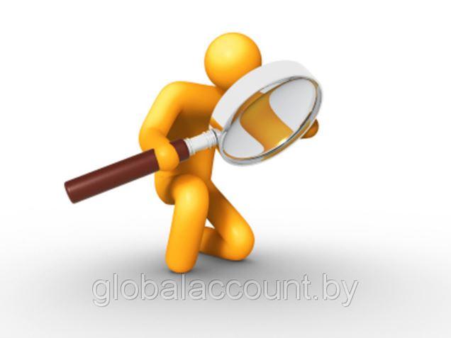 Обнародованы координационные планы проверок на 2-е полугодие 2013 г.