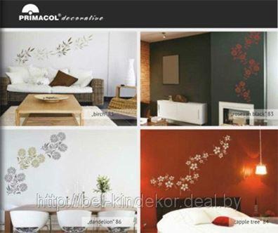 Проведение мастер-классов в области применения декоративных штукатурок торговой марки PRIMACOL