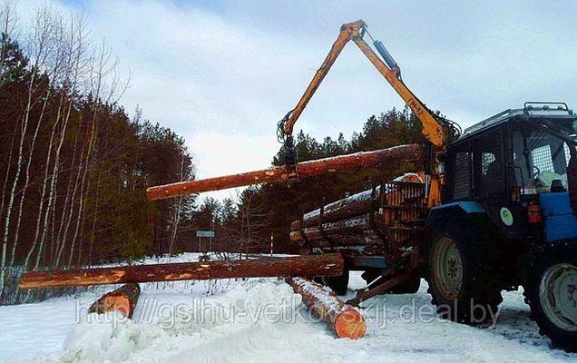 Утверждены новые Правила реализации древесины в Беларуси.