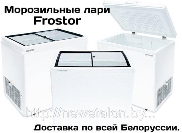 Морозильные лари Frostor в Белоруссии. Продажа морозильных ларей в Минске и Гомеле с доставкой по всей Белоруссии.