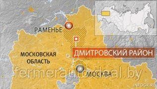 В Подмосковье сгорела психиатрическая больница. Погибли 38 человек
