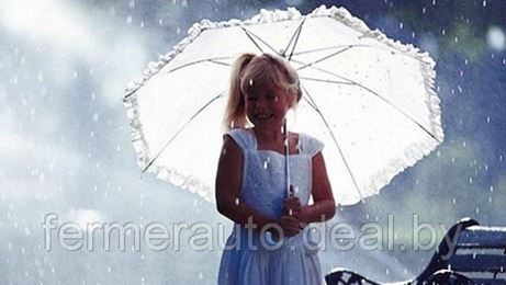 В Беларуси задержится дождливая погода
