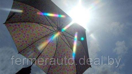 В Беларуси в ближайшие дни потеплеет и станет меньше дождей