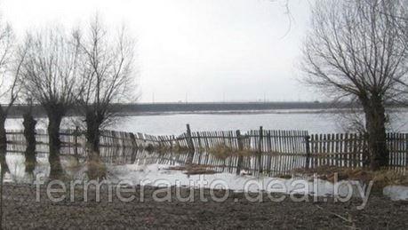 В Беларуси подтоплены более 250 домов и 1000 подворий