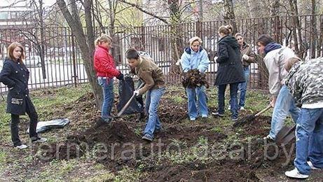 Лукашенко поручил провести 20 апреля республиканский субботник