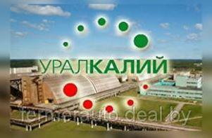 «Уралкалий» ответил на указ Лукашенко решением прекратить экспорт через БКК